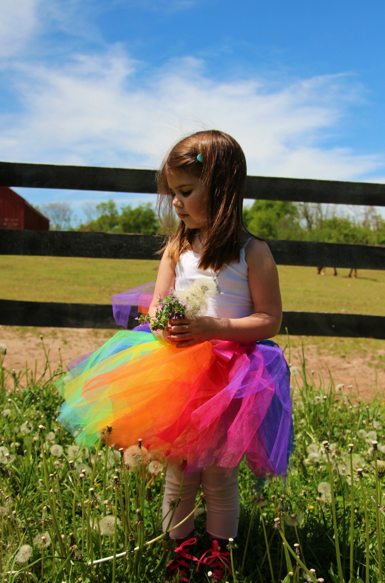 Rainbow Tutu:: Little Pink Monster