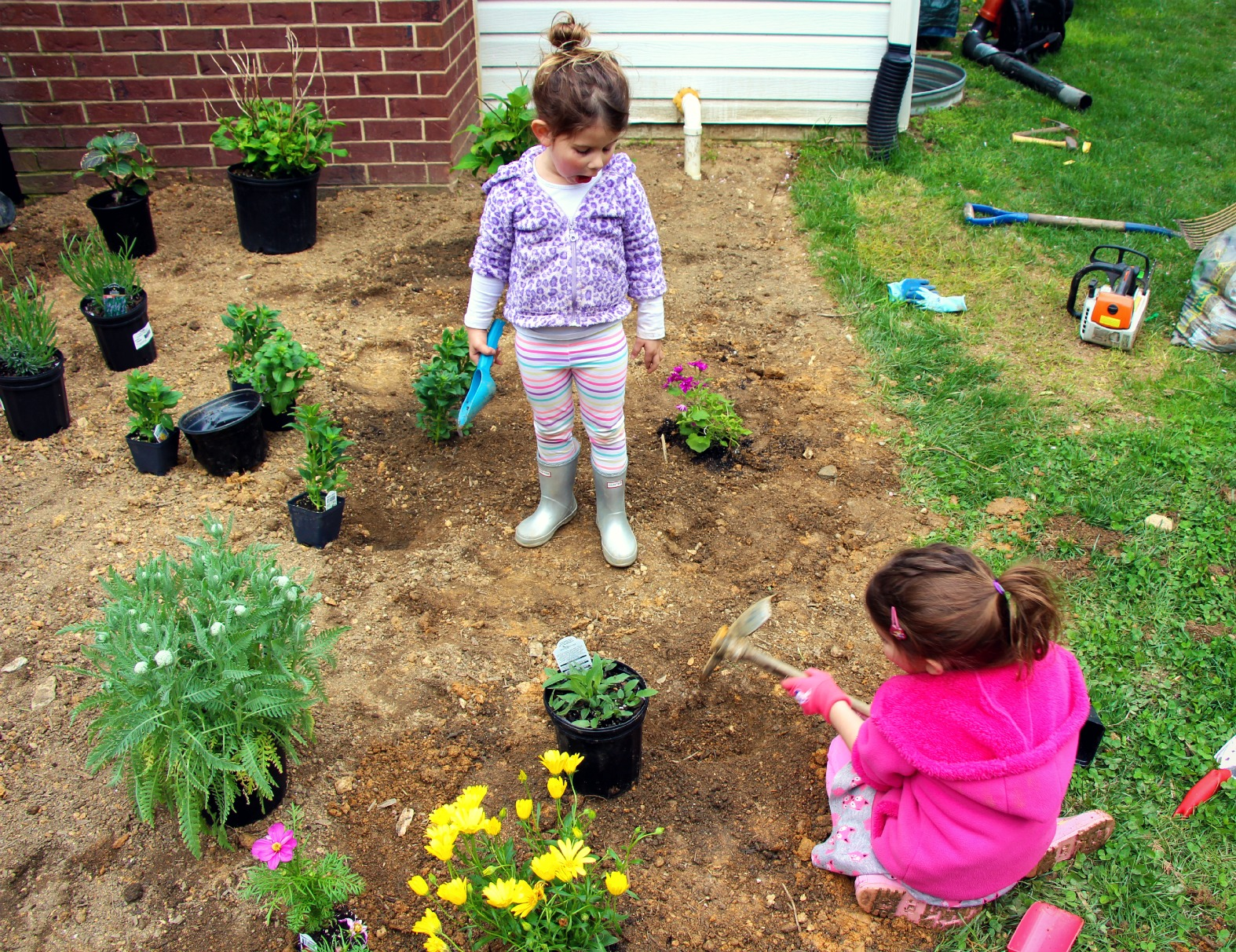 Our first garden: how to plant a cutting garden with your kids