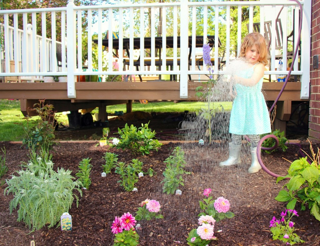 How to plant a cutting garden:: Our First Garden with Little Pink Monster